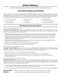 Cus Resume Summary Examples For Customer Service On Professional Template 2018