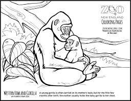Color A Gorilla