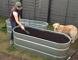 Horse Trough Bathtub Diy by Horse Trough Raised Bed Gardens Water And Feed Your Veggies And