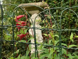 Decorative Garden Fence Border by Decorative Garden Fencing 0 4m X 10m Arch Top Green Steel Fence