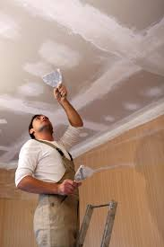 Polystyrene Ceiling Panels Cape Town by Different Types Of Ceilings Homemakers Online