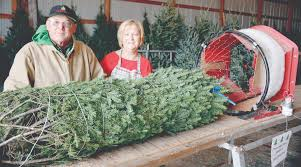 Christmas Tree Baler Netting by Stolz Family Offers Trees Greenery For The Season The Prairie