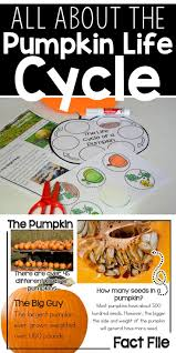 Largest Pumpkin Ever Grown 2015 by 388 Best Georgia Science U0026 Social Studies Resources Images On