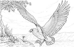 Hard Animal Coloring Pages And
