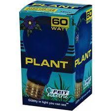 bulbrite 860195 60a19pg 60 watt plant grow light bulb with a shape