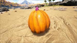 Pumpkin Seeds Terraria by Pumpkin Official Ark Survival Evolved Wiki