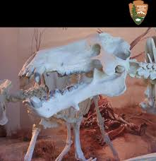 Agate Fossil Beds National Monument by Agate Fossil Beds National Monument Home Facebook