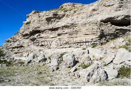 Agate Fossil Beds by Miocene Stock Photos U0026 Miocene Stock Images Page 5 Alamy