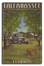 100 Truck Accessories Tallahassee Amazoncom Lantern Press Florida Orange Grove And