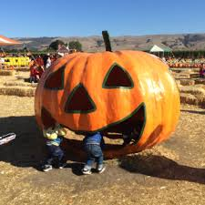 Half Moon Bay Pumpkin Patch 2017 by Fall Time Activities In The Bay Whit Ventures