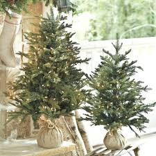 Walmart White Christmas Trees Pre Lit by Tabletop Christmas Trees Decorated White Tree Walmart Small Live