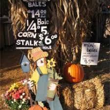 Santa Clarita Pumpkin Patch Festival by Nancy U0027s Ranch Scv U0027s Local Ranch For Family Traditions