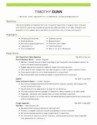 Computer Skills Resume Beautiful Puter For New Objective Examples Business