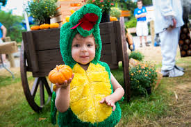 Pumpkin Patch Austin Texas 2015 by Fall Events In Houston Pumpkin Patches And Halloween 2016