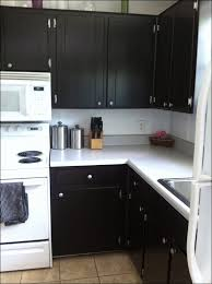 kitchen room wonderful gel stain cabinets before and after how