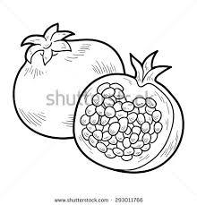 Coloring Book Fruits And Vegetables Pomegranate