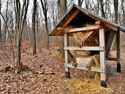Free Images : Forest, Wood, Hay, Shed, Hut, Shack, Deer, Cottage ... Barns Outhouse Plans Pdf Pictures Of Outhouses Country Cool Design For Your Inspiration Outhousepotting Shed Coop Build Backyard Chickens Free Backyard Garden Shed Isometric Plan Images Cottage Backyard Kiosk Thouse Exchange Door Nyc Sliding Designs Fresh Awning Outdoor Shower At The Mountain Cabin Eccotemp L5 Tankless Water Keter Manor Large 4 X 6 Ft Resin Storage In Mountains Northern Norway Dunnys Victorian And Yard Two Up Two Down Terrace House