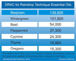 6th Edition Essential Oils Desk Reference Online by Young Living Essential Oils Orac Chart Raindrop Technique