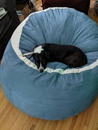 My Dog Loves Her Big Bean Bag Chair : Aww Queen Chair Corduroy 8 Ft Bean Bag Large 5 Saravihacom Bed For Dogs Korrectkritterscom Icon Kenai Faux Fur Arctic Wolf Grey 85cm X 50cm Luxurious Furry Living Room Bags For Adults Leather Bean Bag Chair Xl No Beans Inc In Me10 Swale The Big Giant Huge Extra Paw Dog Beds Ultimatesack Brilliant About Vinyl Chairs Home Design Inspiration And What Is The Best Sofa Fabric If You Have Pets Forever Pet