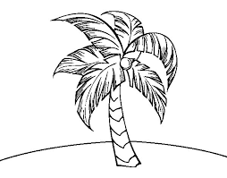A Palm Tree Coloring Page