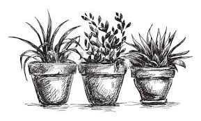 dessin de pot de fleurs idée d image de fleur