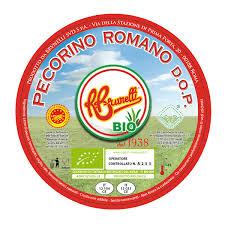 pecorino romano fromage italien