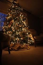 Balsam Hill Premium Artificial Christmas Trees by Best 25 Balsam Tree Ideas On Pinterest Balsam Christmas Tree