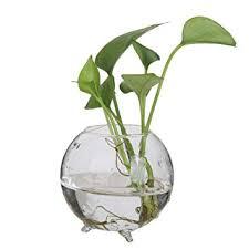 höhe 28cm transparent kegelglas glasvase glasvasen hängend
