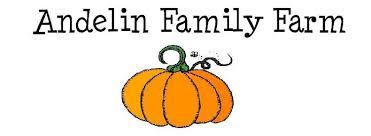 Pumpkin Patch Reno by Pumpkin Patch Logo 5 Jpg