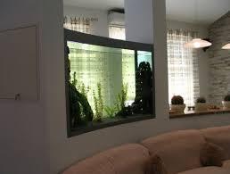 aquarium in der wand integrieren raumteiler transparent