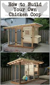 Backyards : Stupendous 25 Best Ideas About Backyard Chicken Coops ... Chicken Coops Southern Living Best Coop Building Plans Images On Pinterest Backyard 10 Free For Chickens The Poultry A Kit W Additional Modifications Youtube 632 Best Ducks Images On 25 Diy Chicken Coop Ideas Coops Pictures With Material Inside 2949 Easy To Clean Suburban Plans