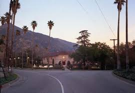 Christmas Tree Types In California by Come One Come All To Christmas Tree Lane History Buff