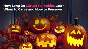 Preserving A Carved Pumpkin by How Long Do Carved Pumpkins Last When To Carve And How To Preserve