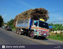 Thailand Truck Stock Photos & Thailand Truck Stock Images - Alamy Local Truck Driving Jobs In Jacksonville Fl Auto Info Lovely Pany Driver Ca Aca On Twitter Congratscsattfteamsters 399 Of The Year Award Presented To By Son Jb Hunt Rockford Il Traing Free School Union Riverside Ca Best 2018 Jb 45 Fresh Stock Joey D Golf Reviews Local Truck Driving Jobs In Houston Tx Download Billigfodboldtrojer New Jersey Cdl Nj