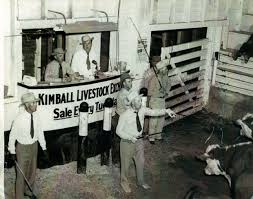 Kimball Livestock Exchange Now Operating Under New Owners | TSLN.com Livestock Mart Stock Photos Images Alamy Auction Usa Sale Barn Wahoo Ne Bigiron Realty Sale Barn Chaing Hands News Hooashlandwaverlycom Shamrock 041016 12690593r By Tristate Farmer Rancher Matney Father And Son Take Over Buffalo From Jay Market Stocker Source Merial Gordon Report 22817