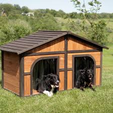 Do All Big Dogs Shed by Boomer U0026 George Darker Stain Duplex Dog House With Free Dog Doors