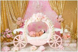 This Entry Was Posted In Newborn Photo Session And Tagged Arthur Ave Studio Baby Girl