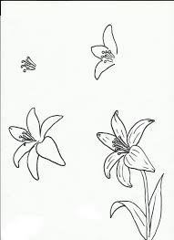 Full Size of Drawing how To Draw A Realistic Flower In Illustrator With How To