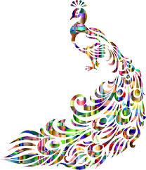 Checkered Chromatic Peacock Line Art