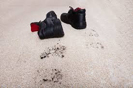 How Does A Carpet Stretcher Work by Nip Tuck Carpet Repair Blog Carpeting Articles Flooring Information