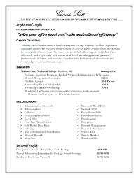Profile On Resume Skilled Examples 2017