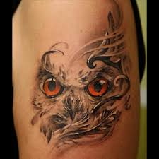 An Owl Can Look Beyond The Surface To See Real Truth Underneath Mountains Of Fluff Owls Are Spiritual Mirrors Totems That Force Us Face Thing