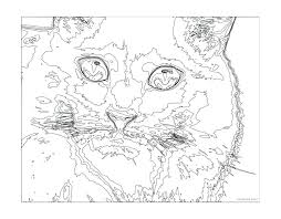 Christmas Hidden Picture Color By Number Multiplication Cat Coloring Pages Teenagers Difficult Bible Numbers Kids Free