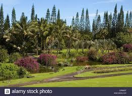 Elk284 2114 Hawaii HI Hilo Nani Mau Gardens tropical garden