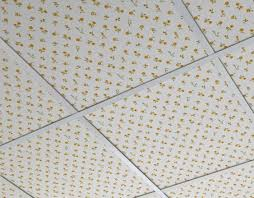ceiling amiable refreshing 2x4 drop ceiling tiles home depot