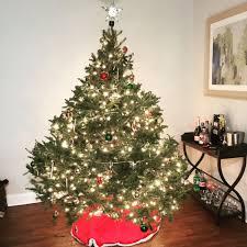 Fraser Fir Christmas Trees For Sale by Cedar Grove Christmas Trees Christmas Trees 50 Pompton Ave