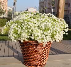 20 PCS Rustic Decoration Artificial Flower Fashion Gypsophila Babys Breath Plastic For Wedding Decorative Wholesale