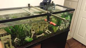 60 Gallon Aquarium Bar Clamp - YouTube I Really Want A Jellyfish Aquarium Home Pinterest Awesome Fish Tank Idea Cool Ideas 6741 The Top 10 Hotel Aquariums Photos Huffpost Diy Barconsole Table Mac Marlborough Tank Stand Alex Gives Up Amusing Experiments 18 Best Fish Images On Aquarium Ideas Diy Clear For Life Hexagon Hayneedle Bar Custom Tanks Ponds Designs For Freshwater Modern 364 And Tropical Ov Cylinder 2