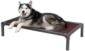 K9 Ballistics Bed by 6 Indestructible Dog Beds For Chew Tastic Dogs Rover Com
