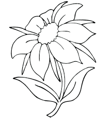 Flowers Coloring Book Pages